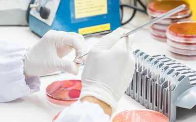Additional Microbiological Methods Accredited